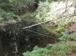 Steinbruchweiher im Tresselwald